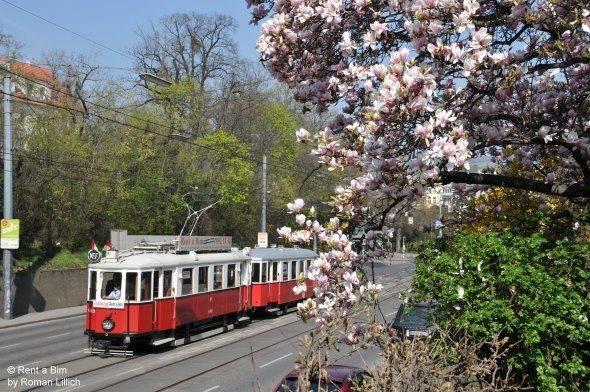 Frühling auf dem Weg zur Ringstraße